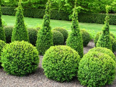 garten arbeiten natures garden garten natur. Black Bedroom Furniture Sets. Home Design Ideas