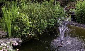 Wasserpumpen